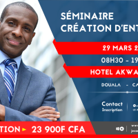 SÉMINAIRE CRÉATION D'ENTREPRISE 29 MARS 2019 HOTEL AKWA PALACE 08H30 - 19H30 DOUALA    -  🇨🇲 CAMEROUN